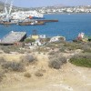"""H Δήμαρχος Σαλαμίνας κατήργησε την Επιτροπή που έσωσε την Κυνόσουρα από την πώληση στην Cosco"""