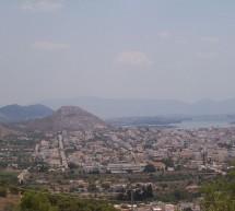 Αναφορά Αλεξιάδη για το δασικό πρόβλημα στη Σαλαμίνα