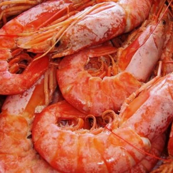 Aκατάλληλα αλιεύματα εντόπισαν οι ελεγκτές σε εστιατόριο του Πειραιά