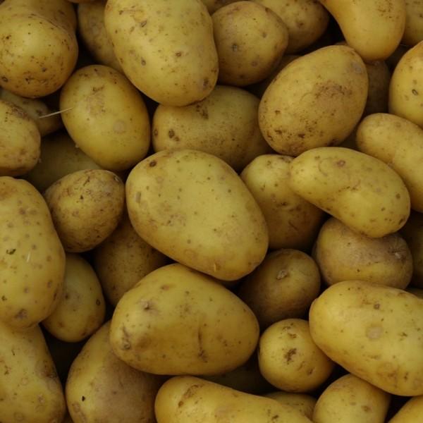 Κατάσχεση και καταστροφή πατάτας στον Πειραιά