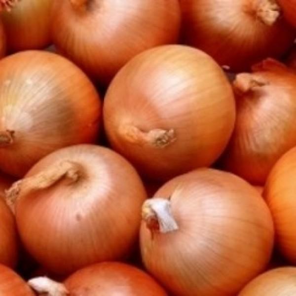 Δέσμευση 25 τόνων κρεμμυδιών σε επιχείρηση του Πειραιά
