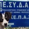 Σε ημερίδα για τα αδέσποτα ζώα δεν δόθηκε ο λόγος στον ΠΕΣΥΔΑΠ