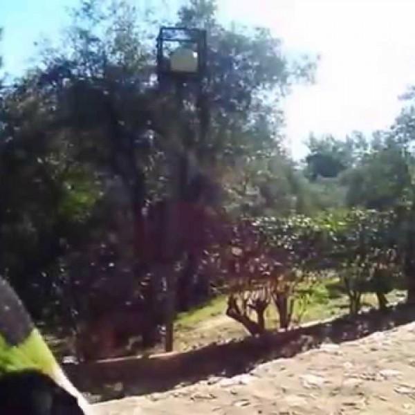 Γιορτή περιβαλλοντικής ευαισθητοποίησης στον Αγ. Φίλιππο Νίκαιας