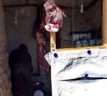 Μόρια: Οι λαθρομετανάστες πωλούν τα κρέατα των προβάτων που κλέβουν από τις στάνες