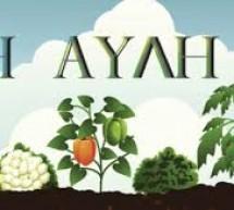 Δωρεάν διάθεση παραδοσιακών φυτών στο Πέραμα