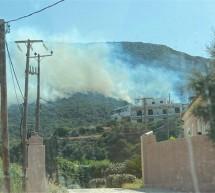 Φωτιά στη Σαλαμίνα