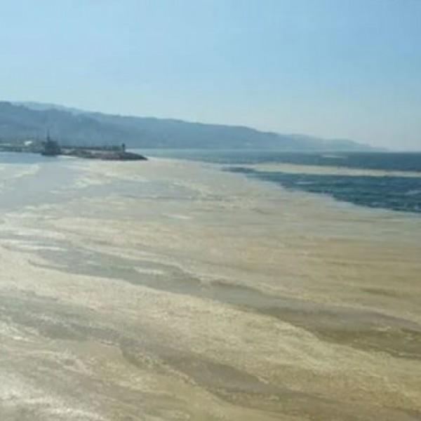 Kωνσταντινούπολη: Kίνδυνος χολέρας από τη μόλυνση της θάλασσας του Μαρμαρά